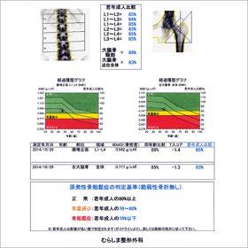 骨密度測定結果